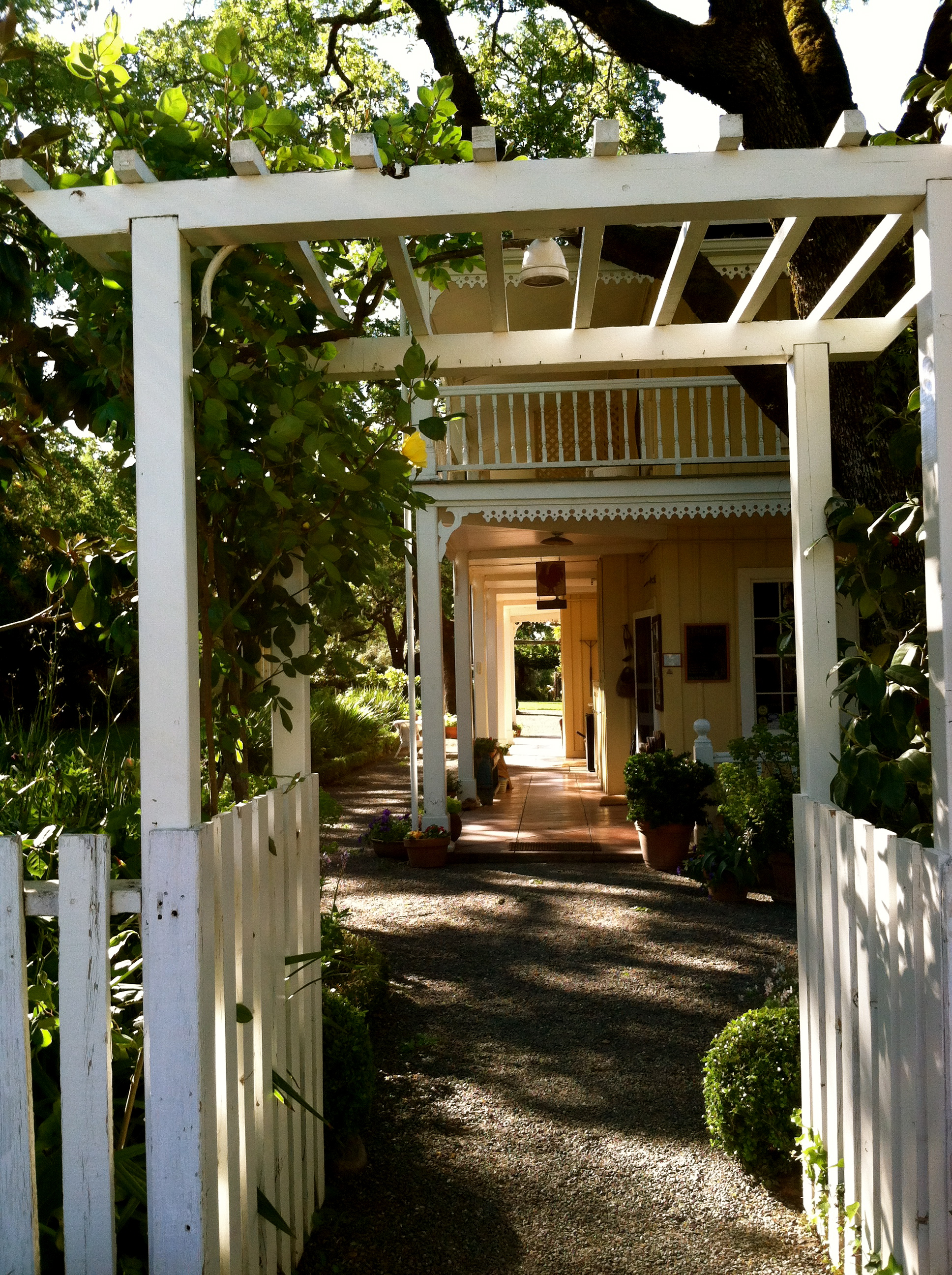 Exploring Sonoma Valley: Beltane Ranch, Jack London Park, and BR ...