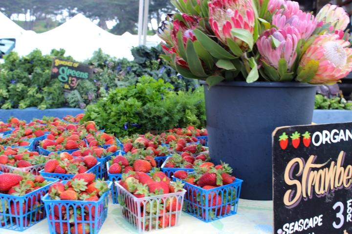 Winter strawberries