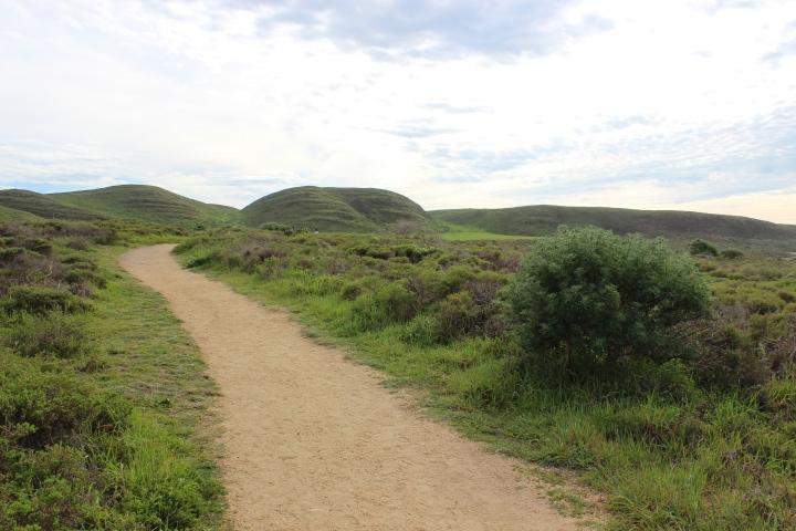 abbots lagoon trail