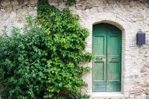 green door-1