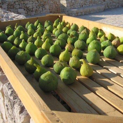 Puglian figs