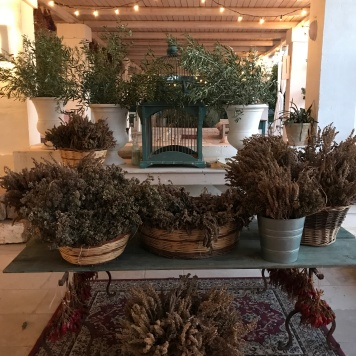 Dried lavender at Masseria Potenti