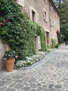Landscaping is on point at La Residencia
