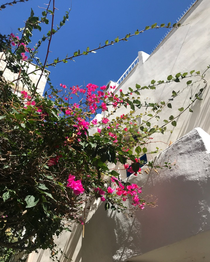 The colors of Ostuni