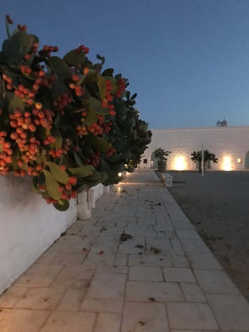 Evening at Masseria Potenti